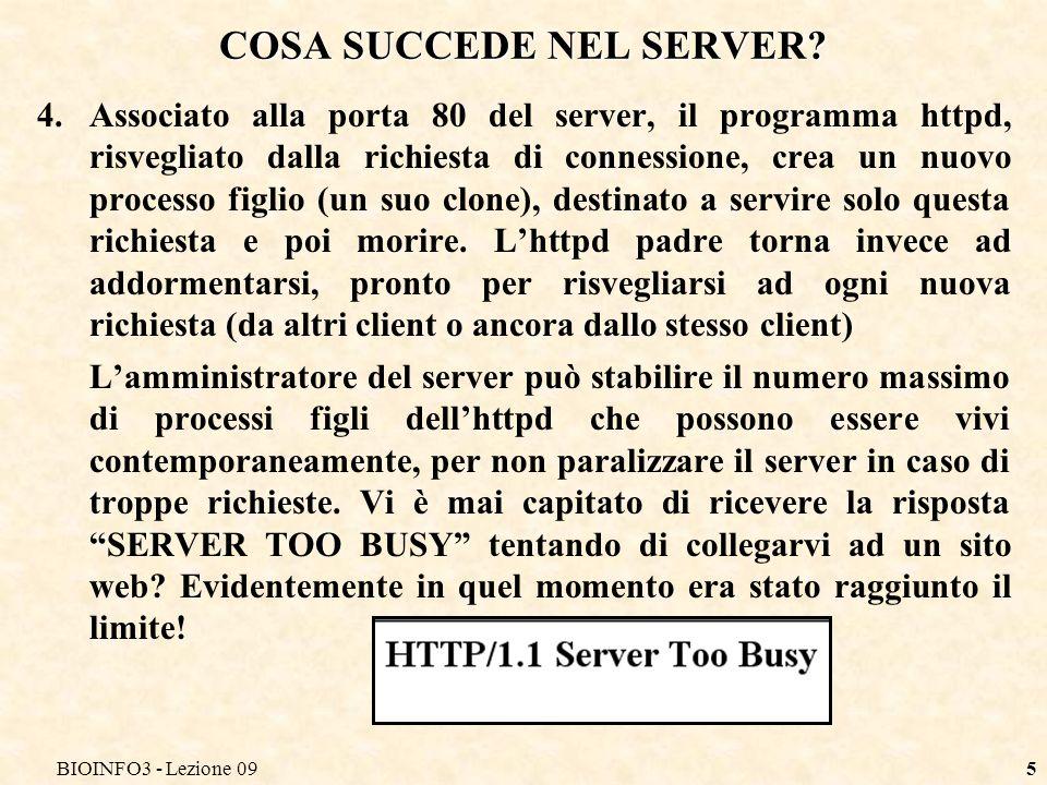BIOINFO3 - Lezione 095 COSA SUCCEDE NEL SERVER.