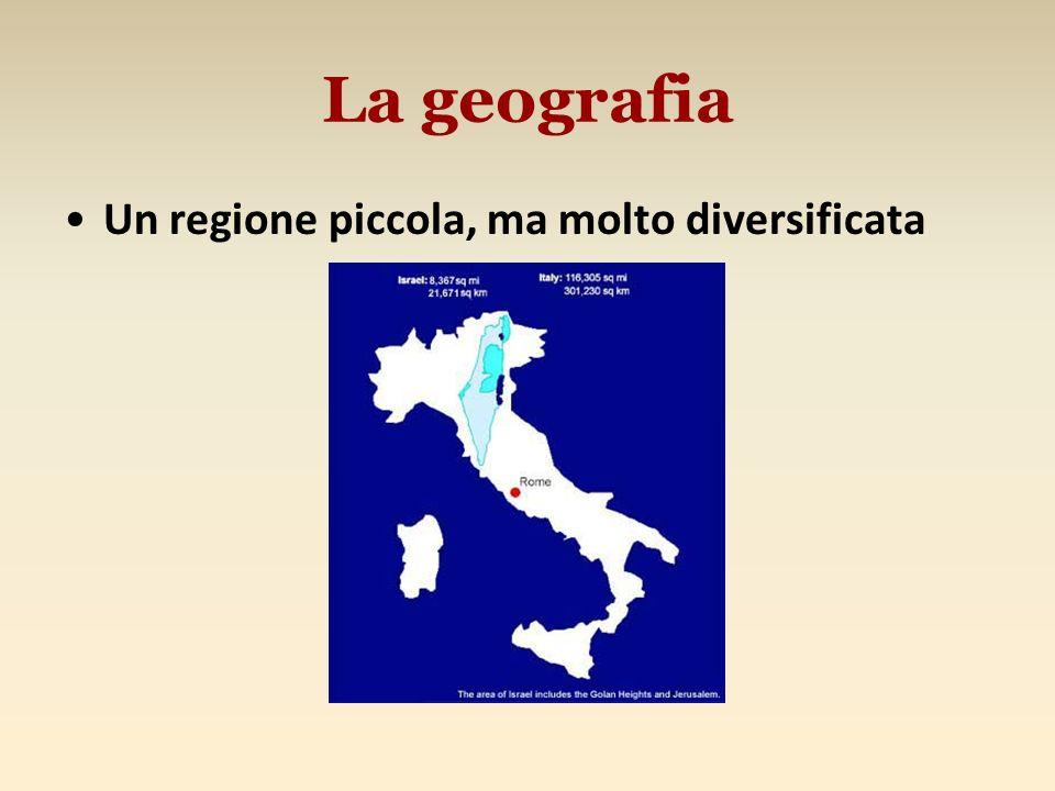 Un regione piccola, ma molto diversificata