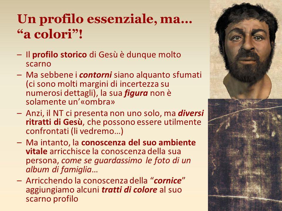Un profilo essenziale, ma… a colori! –Il profilo storico di Gesù è dunque molto scarno –Ma sebbene i contorni siano alquanto sfumati (ci sono molti ma