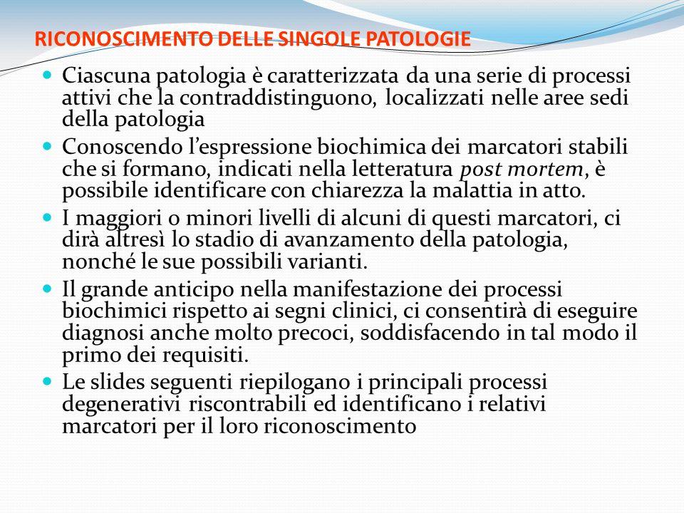 RICONOSCIMENTO DELLE SINGOLE PATOLOGIE Ciascuna patologia è caratterizzata da una serie di processi attivi che la contraddistinguono, localizzati nell