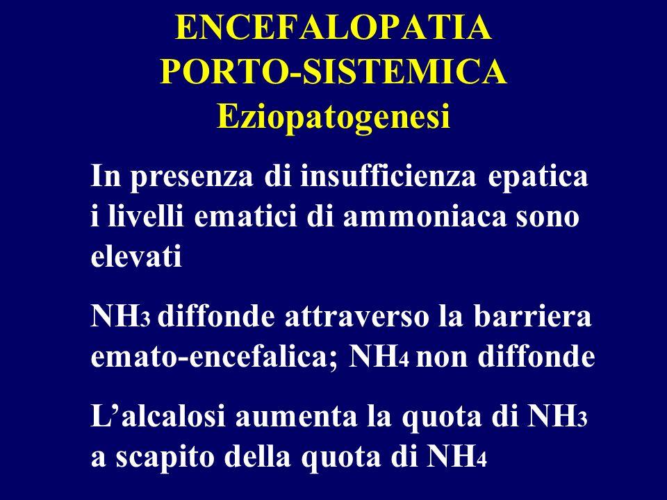 ENCEFALOPATIA PORTO-SISTEMICA Eziopatogenesi In presenza di insufficienza epatica i livelli ematici di ammoniaca sono elevati NH 3 diffonde attraverso