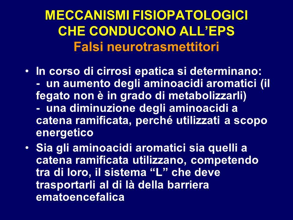 MECCANISMI FISIOPATOLOGICI CHE CONDUCONO ALLEPS Falsi neurotrasmettitori In corso di cirrosi epatica si determinano: - un aumento degli aminoacidi aro