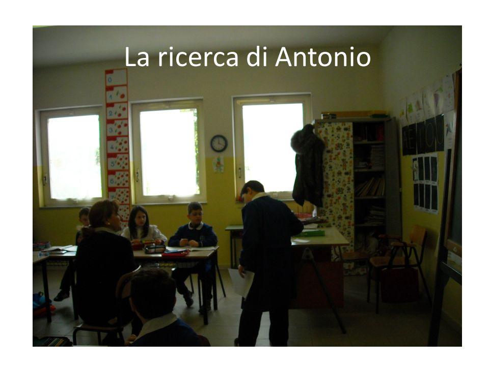 La ricerca di Antonio