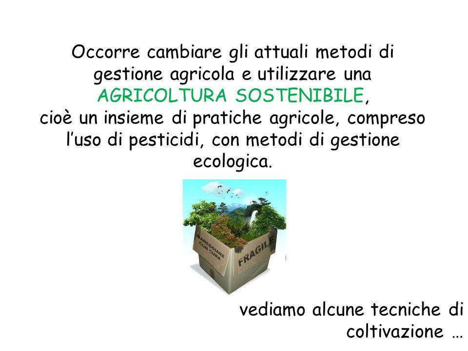 Occorre cambiare gli attuali metodi di gestione agricola e utilizzare una AGRICOLTURA SOSTENIBILE, cioè un insieme di pratiche agricole, compreso luso