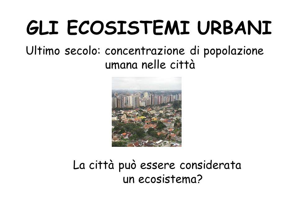 GLI ECOSISTEMI URBANI Ultimo secolo: concentrazione di popolazione umana nelle città La città può essere considerata un ecosistema?
