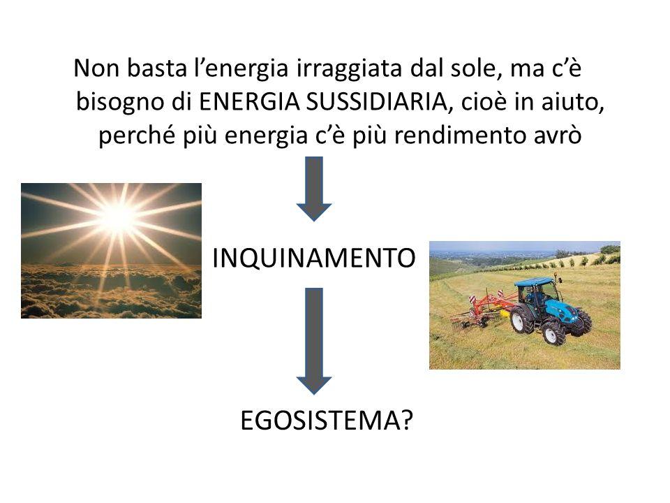 Non basta lenergia irraggiata dal sole, ma cè bisogno di ENERGIA SUSSIDIARIA, cioè in aiuto, perché più energia cè più rendimento avrò EGOSISTEMA? INQ