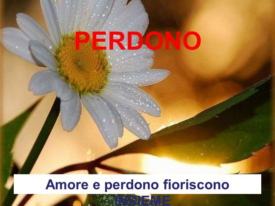 PERDONO Amore e perdono fioriscono INSIEME