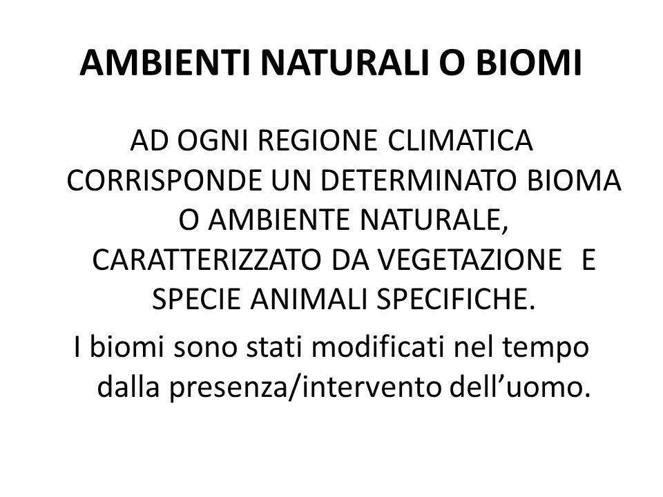 AMBIENTI NATURALI O BIOMI AD OGNI REGIONE CLIMATICA CORRISPONDE UN DETERMINATO BIOMA O AMBIENTE NATURALE, CARATTERIZZATO DA VEGETAZIONE E SPECIE ANIMA