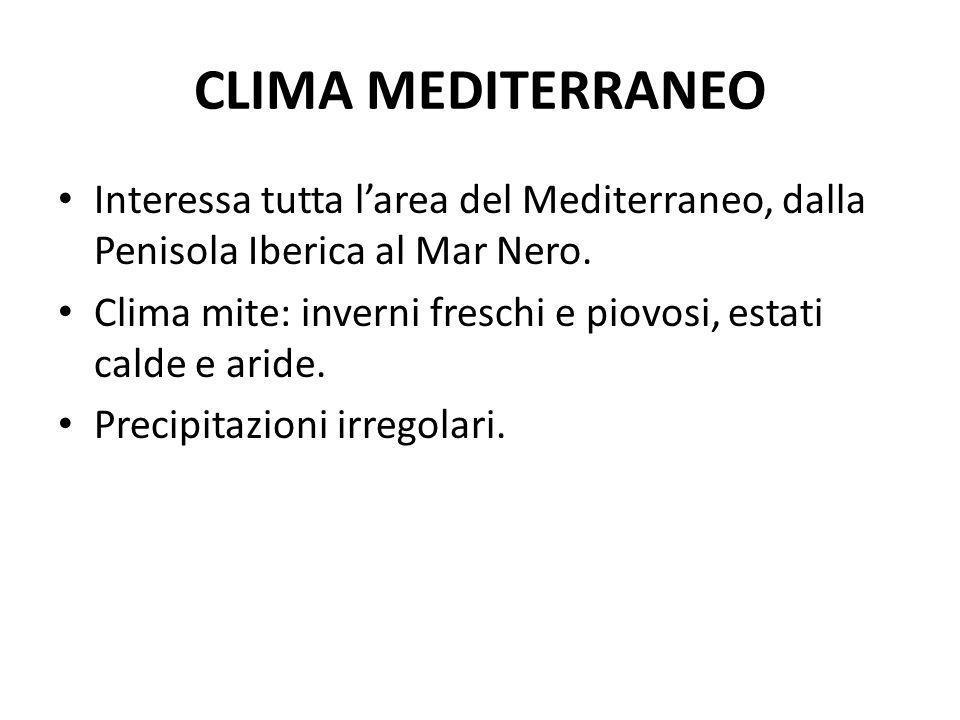 CLIMA MEDITERRANEO Interessa tutta larea del Mediterraneo, dalla Penisola Iberica al Mar Nero. Clima mite: inverni freschi e piovosi, estati calde e a