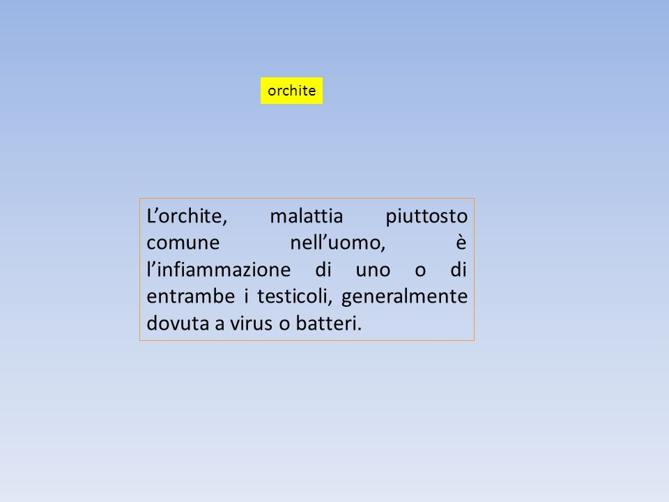 Lorchite, malattia piuttosto comune nelluomo, è linfiammazione di uno o di entrambe i testicoli, generalmente dovuta a virus o batteri. orchite