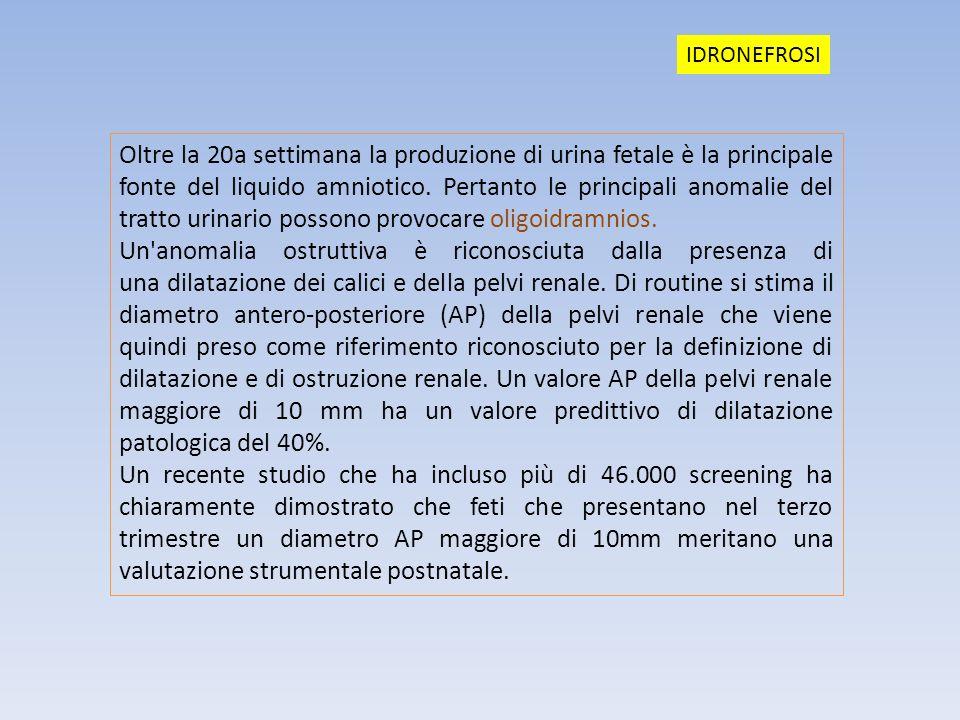 Oltre la 20a settimana la produzione di urina fetale è la principale fonte del liquido amniotico. Pertanto le principali anomalie del tratto urinario
