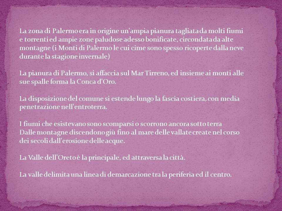 La zona di Palermo era in origine un'ampia pianura tagliata da molti fiumi e torrenti ed ampie zone paludose adesso bonificate, circondata da alte mon