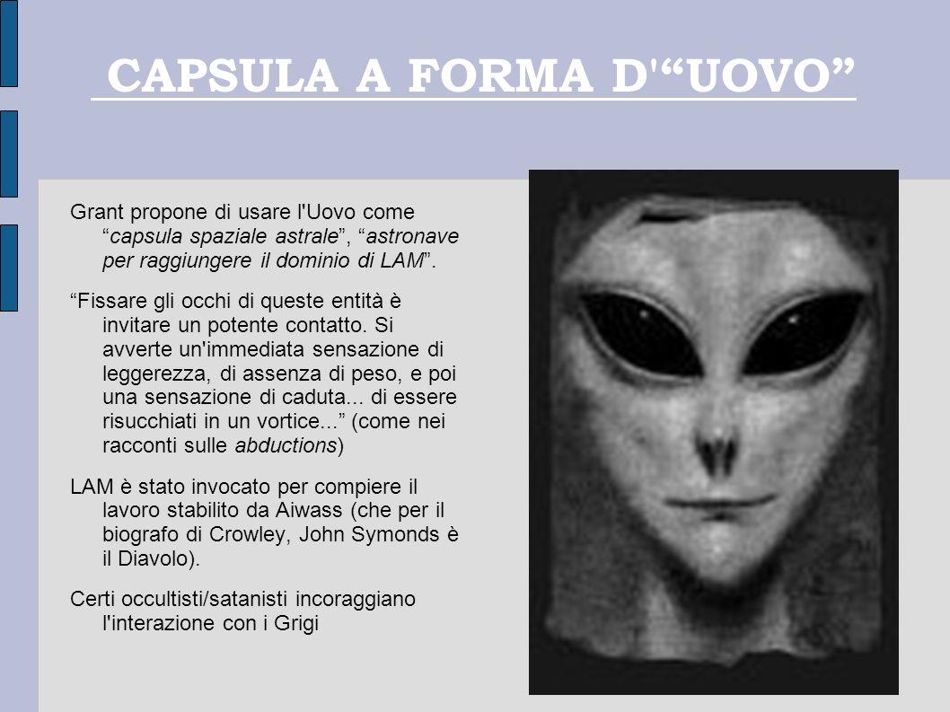 CAPSULA A FORMA D'UOVO Grant propone di usare l'Uovo comecapsula spaziale astrale, astronave per raggiungere il dominio di LAM. Fissare gli occhi di q