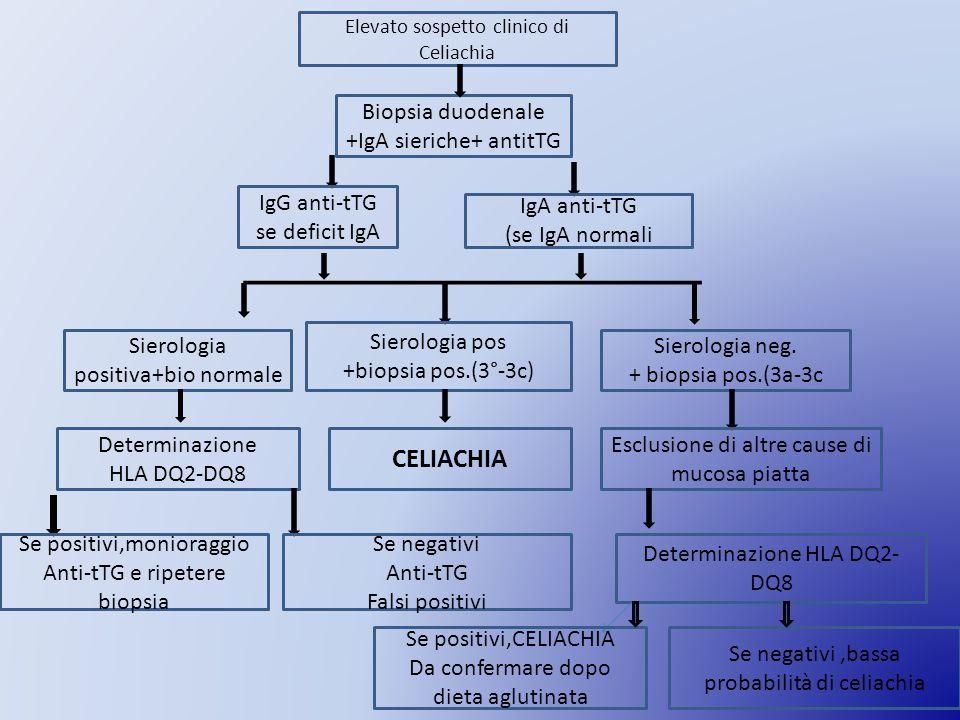 Elevato sospetto clinico di Celiachia Biopsia duodenale +IgA sieriche+ antitTG IgG anti-tTG se deficit IgA IgA anti-tTG (se IgA normali Sierologia positiva+bio normale Sierologia pos +biopsia pos.(3°-3c) Sierologia neg.