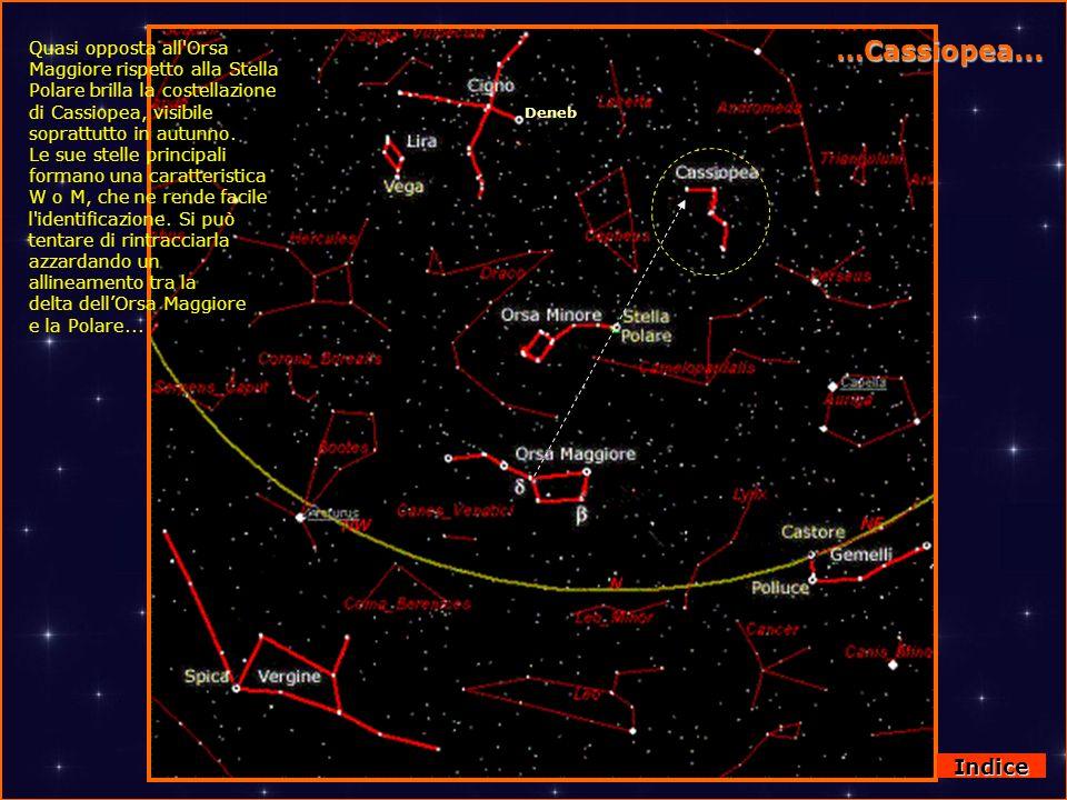 DallOrsa Maggiore a Cassiopea …Cassiopea... Deneb Quasi opposta all'Orsa Maggiore rispetto alla Stella Polare brilla la costellazione di Cassiopea, vi