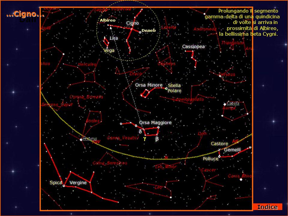 DallOrsa Maggiore al Cigno …Cigno... Deneb Albireo Prolungando il segmento gamma-delta di una quindicina di volte si arriva in prossimità di Albireo,
