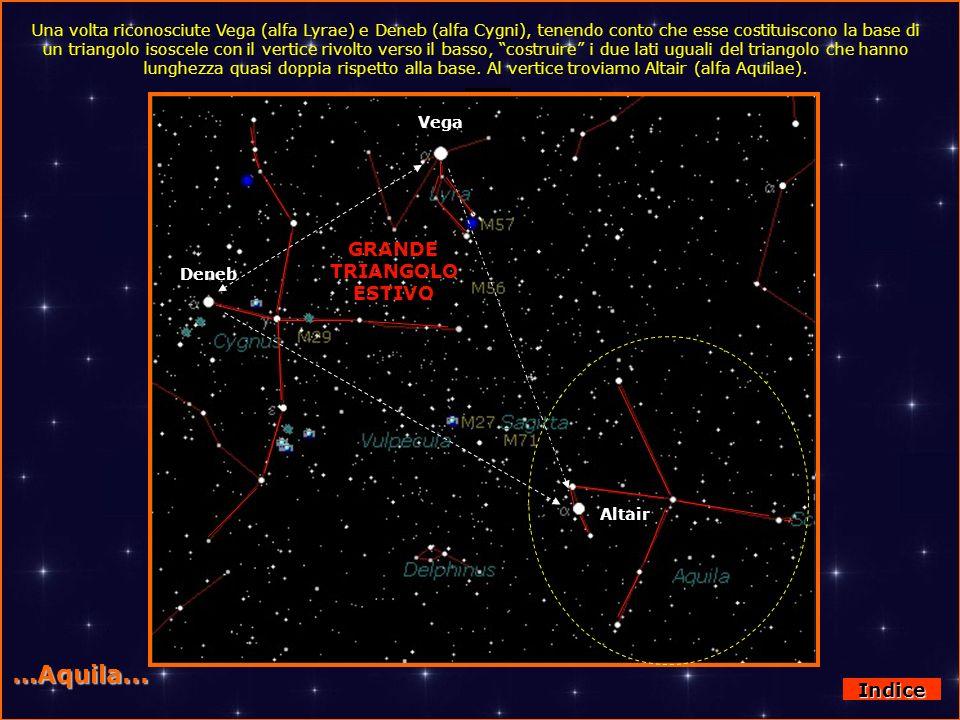 Lira - Cigno e Aquila …Aquila... Vega Deneb Altair GRANDE TRIANGOLO ESTIVO Una volta riconosciute Vega (alfa Lyrae) e Deneb (alfa Cygni), tenendo cont