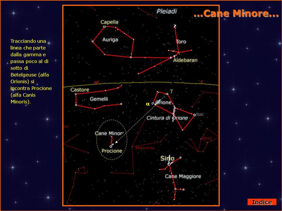 Da Orione al Cane Minore Tracciando una linea che parte dalla gamma e passa poco al di sotto di Betelgeuse (alfa Orionis) si incontra Procione (alfa C