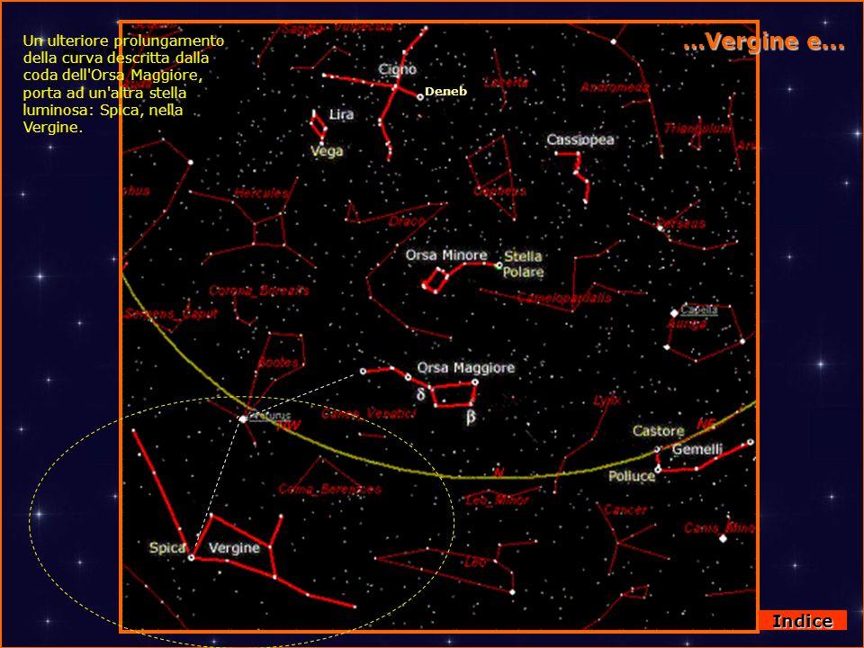 DallOrsa Maggiore a Virgo …Vergine e... Deneb Un ulteriore prolungamento della curva descritta dalla coda dell'Orsa Maggiore, porta ad un'altra stella
