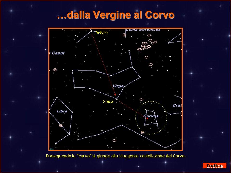 …dalla Vergine al Corvo Indice Proseguendo la curva si giunge alla sfuggente costellazione del Corvo. Arturo Spica