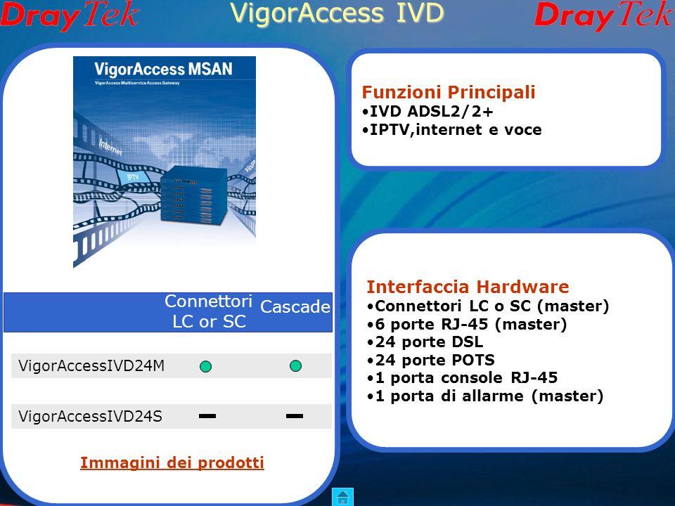 VigorAccess A24 Hardware Master Slave