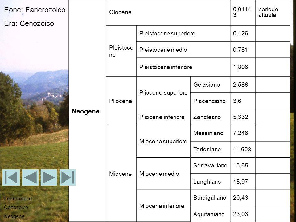 Neogene Olocene 0,0114 3 periodo attuale Pleistoce ne Pleistocene superiore0,126 Pleistocene medio0,781 Pleistocene inferiore1,806 Pliocene Pliocene s