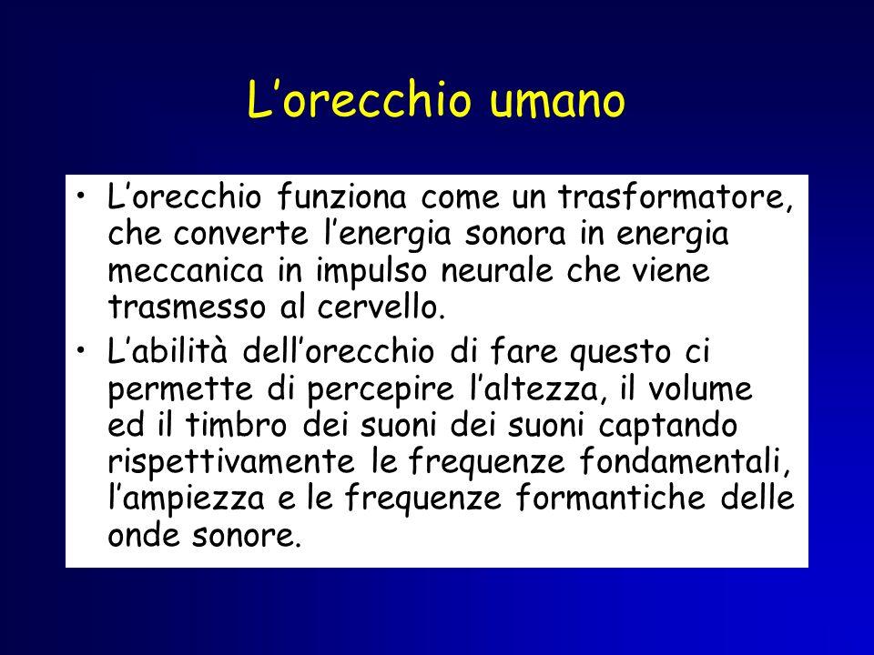 Lorecchio umano Lorecchio funziona come un trasformatore, che converte lenergia sonora in energia meccanica in impulso neurale che viene trasmesso al
