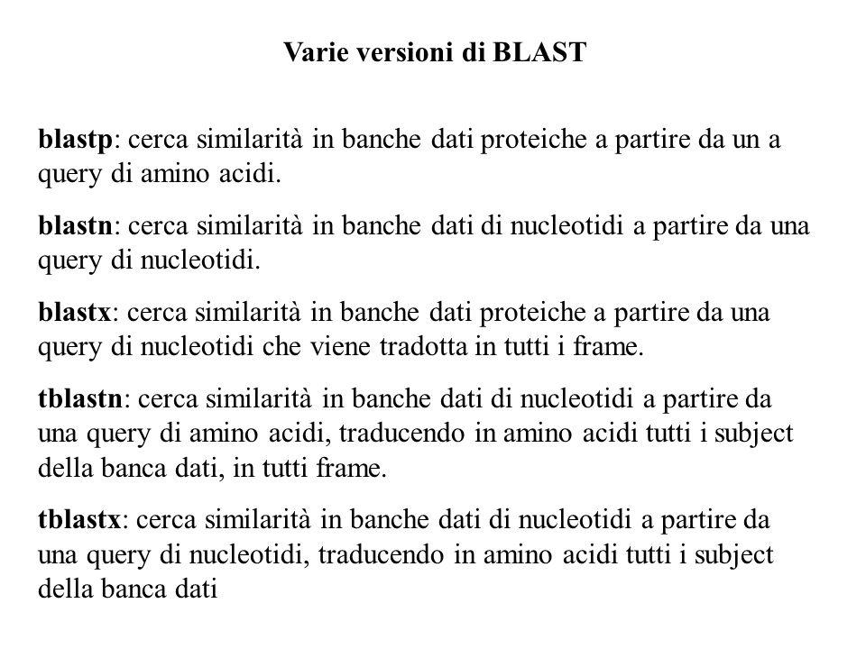 Varie versioni di BLAST blastp: cerca similarità in banche dati proteiche a partire da un a query di amino acidi. blastn: cerca similarità in banche d