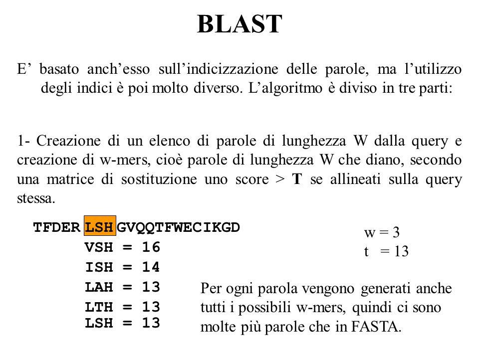 BLAST E basato anchesso sullindicizzazione delle parole, ma lutilizzo degli indici è poi molto diverso. Lalgoritmo è diviso in tre parti: TFDERLSHGVQQ