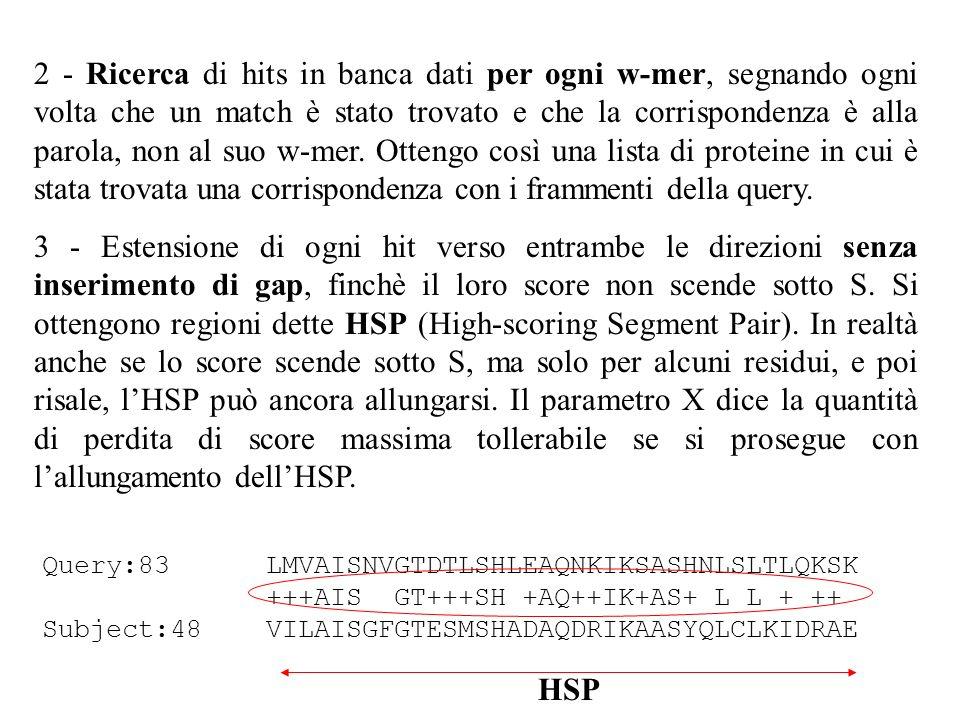 2 - Ricerca di hits in banca dati per ogni w-mer, segnando ogni volta che un match è stato trovato e che la corrispondenza è alla parola, non al suo w