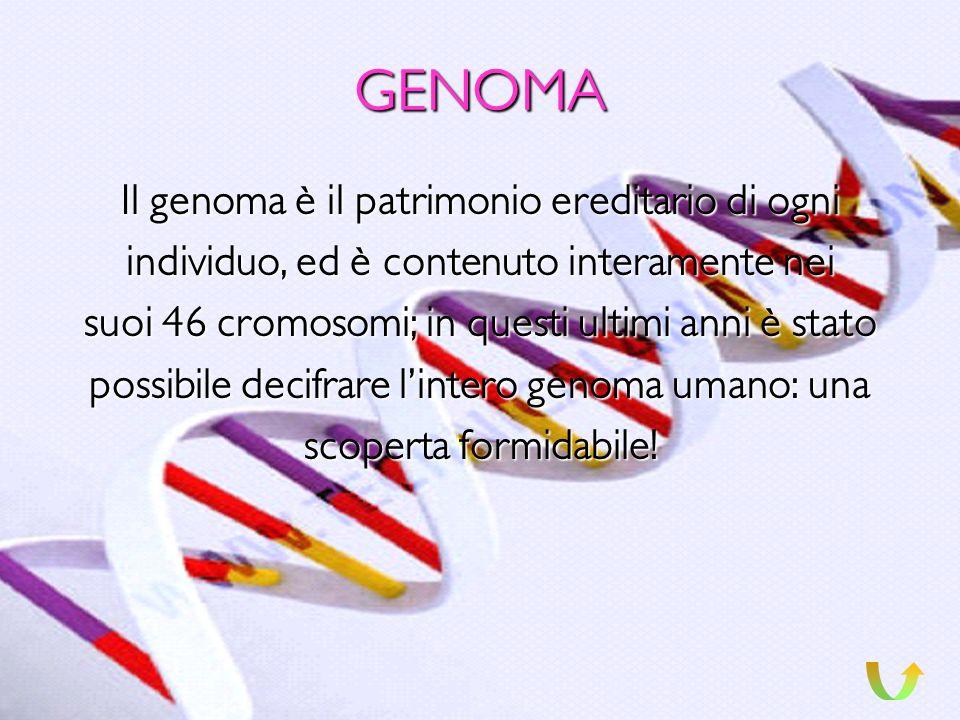 6 LE MUTAZIONI Con il termine di mutazione si intendono modifiche delle mutazione sequenze di basi azotate nel DNA. Se lorganismo è unicellulare tutti