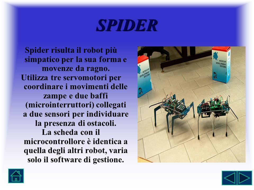 SPIDER Spider risulta il robot più simpatico per la sua forma e movenze da ragno. Utilizza tre servomotori per coordinare i movimenti delle zampe e du