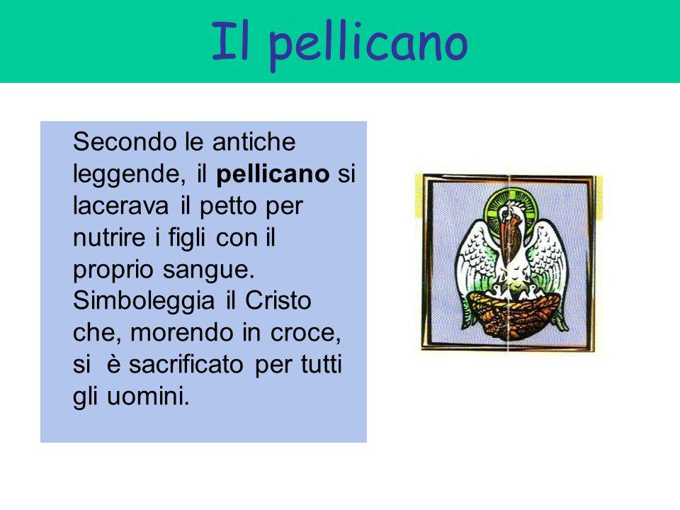 Il pellicano Secondo le antiche leggende, il pellicano si lacerava il petto per nutrire i figli con il proprio sangue. Simboleggia il Cristo che, more
