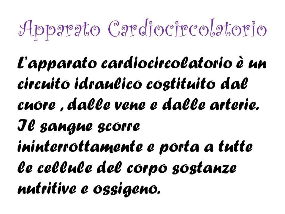 INFARTO Il cuore ha una massa che è meno del 0,5% della massa corporea, siccome che svolge molto lavoro deve essere nutrito di ossigeno e sostanze nutritive.