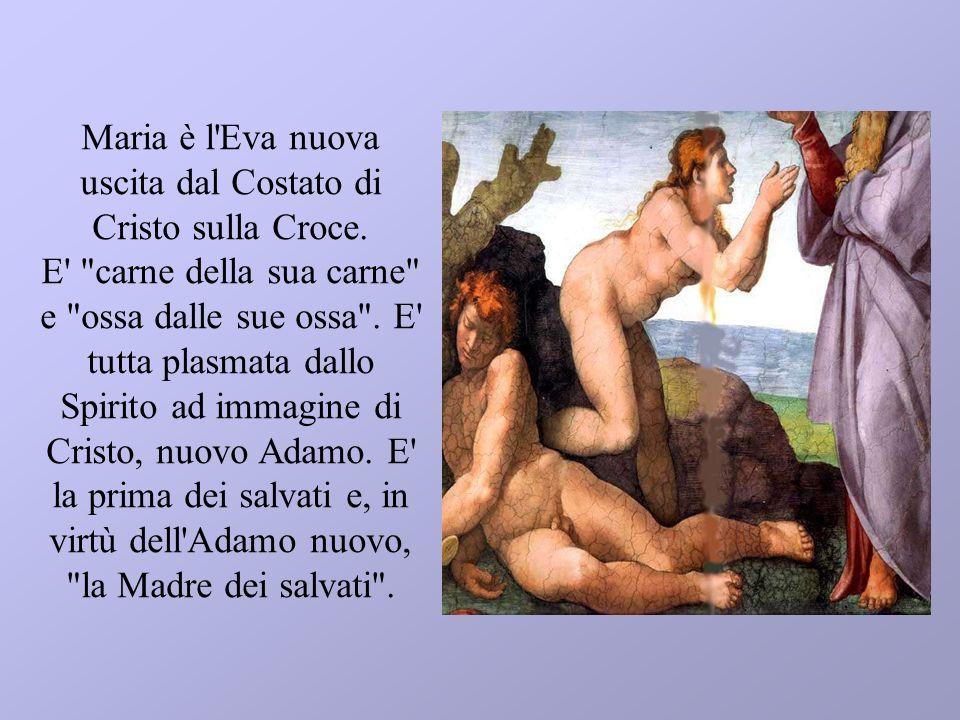 Maria è l'Eva nuova uscita dal Costato di Cristo sulla Croce. E'