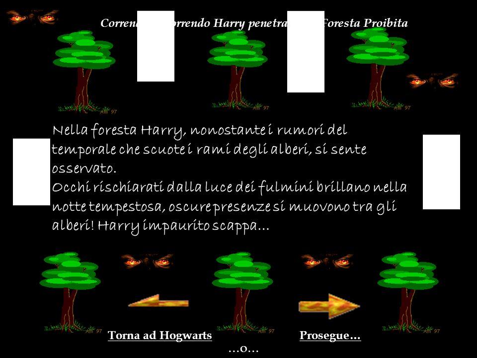 Prosegue…Torna ad Hogwarts …o……o… Nella foresta Harry, nonostante i rumori del temporale che scuote i rami degli alberi, si sente osservato.