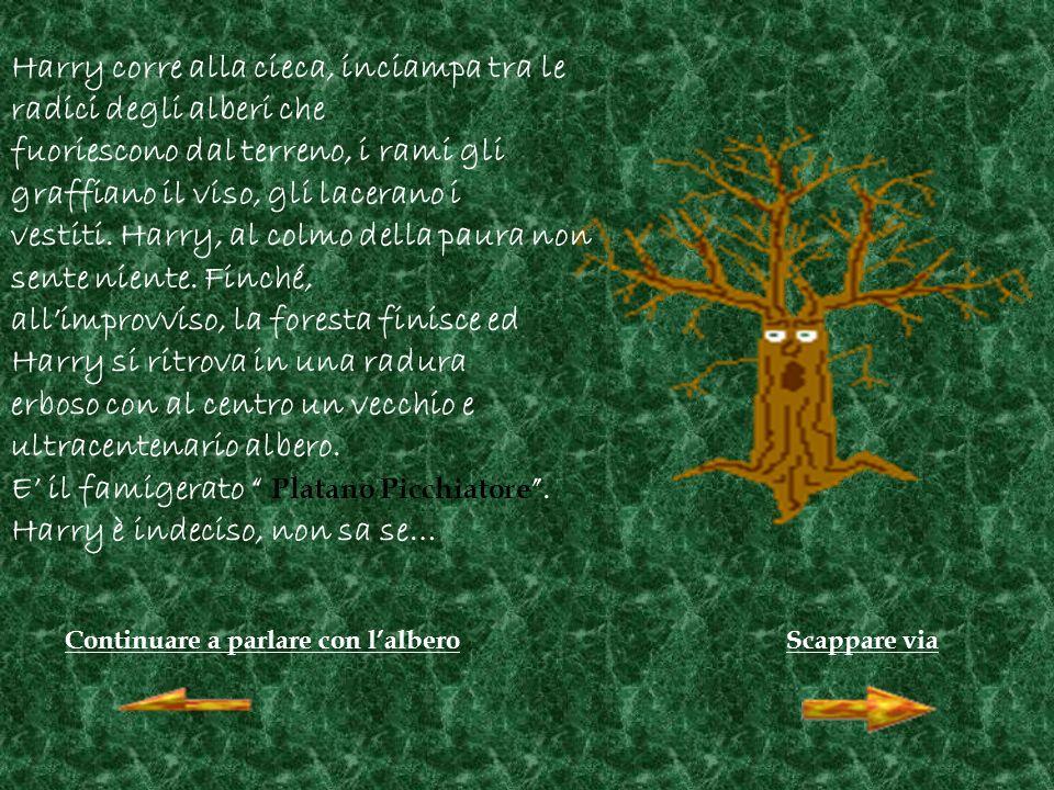 Continuare a parlare con lalberoScappare via Harry corre alla cieca, inciampa tra le radici degli alberi che fuoriescono dal terreno, i rami gli graffiano il viso, gli lacerano i vestiti.
