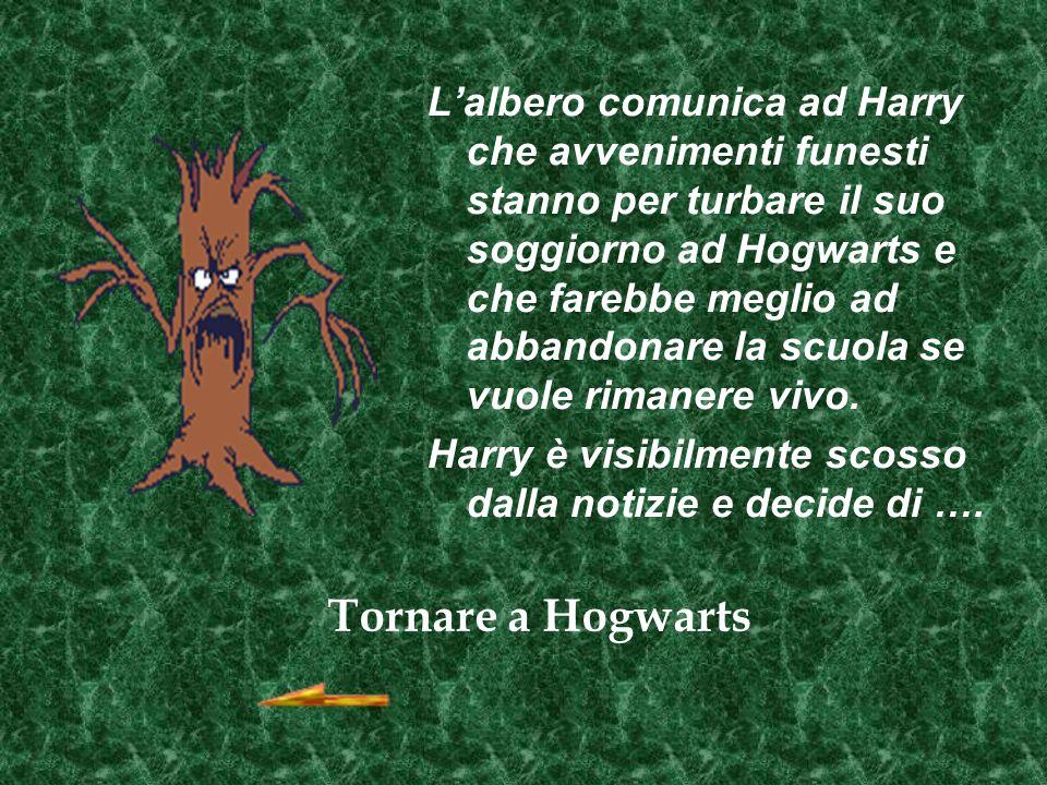 Lalbero comunica ad Harry che avvenimenti funesti stanno per turbare il suo soggiorno ad Hogwarts e che farebbe meglio ad abbandonare la scuola se vuole rimanere vivo.