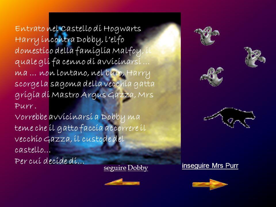 seguire Dobby inseguire Mrs Purr Entrato nel Castello di Hogwarts Harry incontra Dobby, lelfo domestico della famiglia Malfoy, il quale gli fa cenno di avvicinarsi … ma … non lontano, nel buio, Harry scorge la sagoma della vecchia gatta grigia di Mastro Argus Gazza, Mrs Purr.