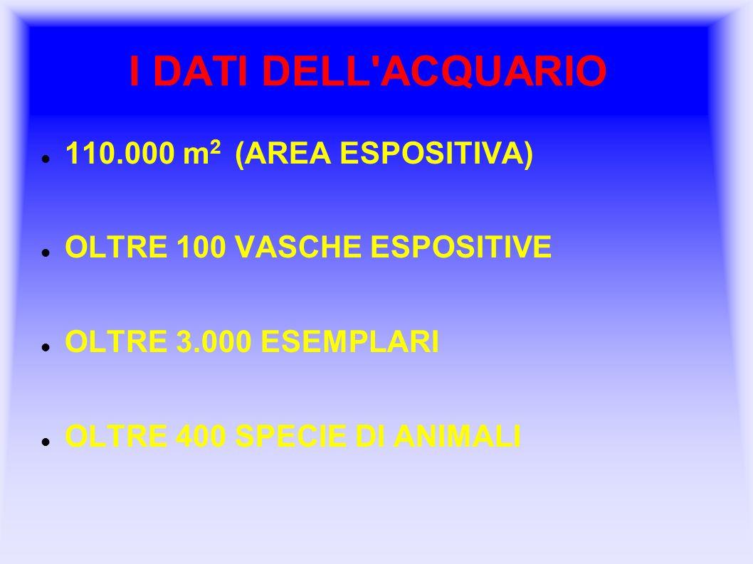 I DATI DELL'ACQUARIO 110.000 m 2 (AREA ESPOSITIVA) OLTRE 100 VASCHE ESPOSITIVE OLTRE 3.000 ESEMPLARI OLTRE 400 SPECIE DI ANIMALI