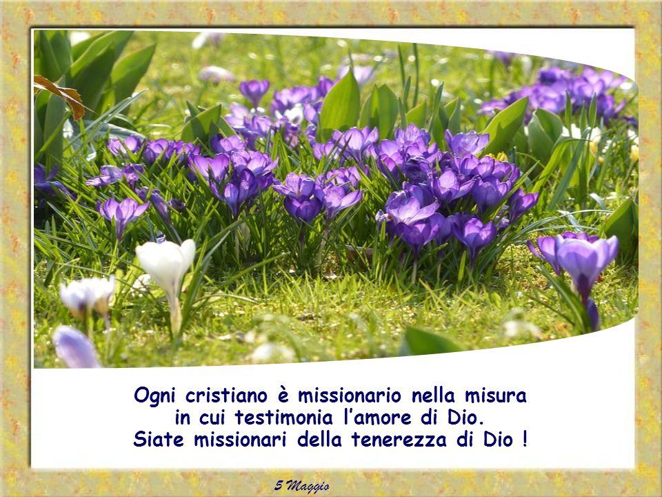 Chiediamo al Signore che tutta la nostra vita cristiana sia una testimonianza luminosa della sua misericordia e del suo amore.