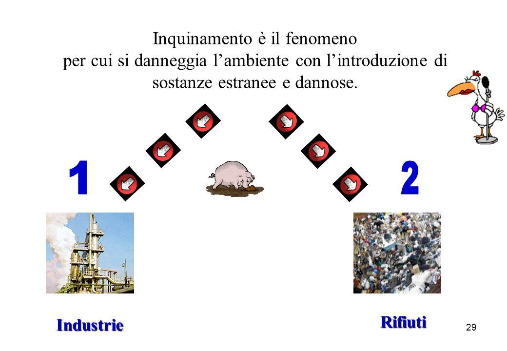 29 Industrie Rifiuti Inquinamento è il fenomeno per cui si danneggia lambiente con lintroduzione di sostanze estranee e dannose.