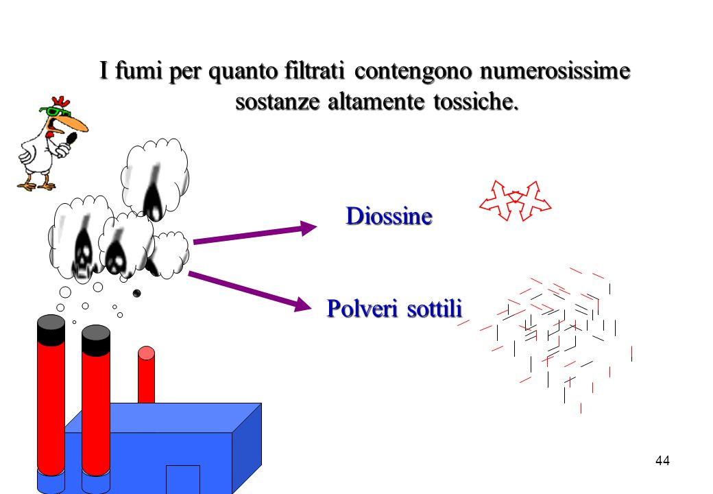 44 I fumi per quanto filtrati contengono numerosissime sostanze altamente tossiche. Diossine Polveri sottili