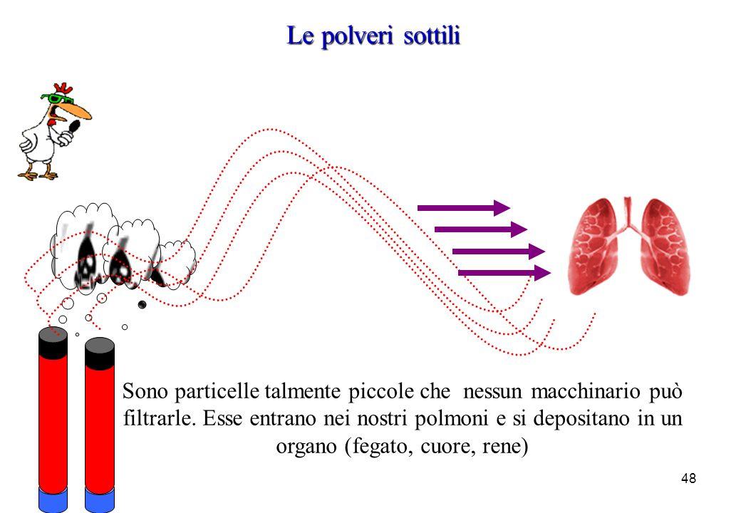 48 Sono particelle talmente piccole che nessun macchinario può filtrarle. Esse entrano nei nostri polmoni e si depositano in un organo (fegato, cuore,