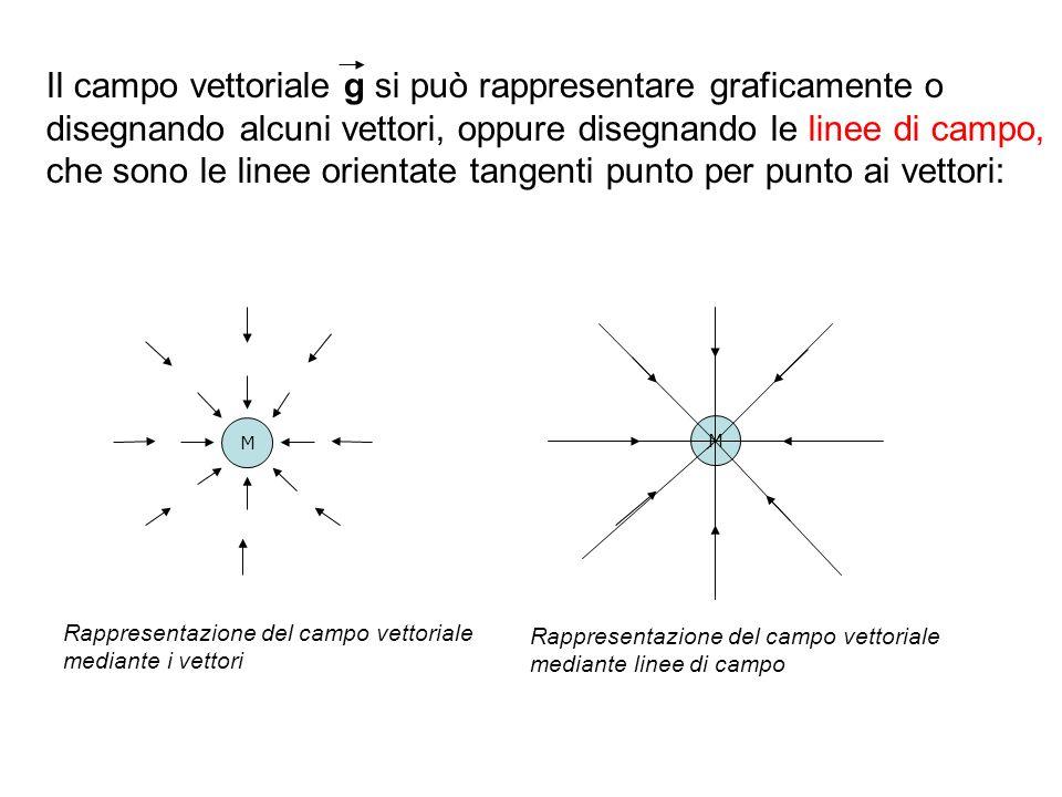 Il campo vettoriale g si può rappresentare graficamente o disegnando alcuni vettori, oppure disegnando le linee di campo, che sono le linee orientate