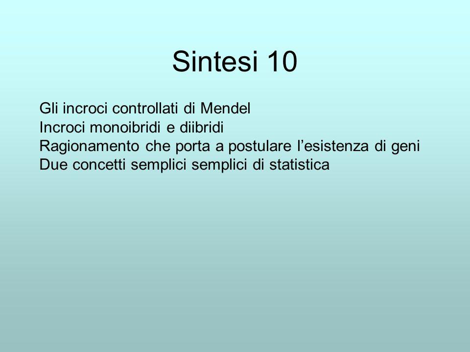 Sintesi 10 Gli incroci controllati di Mendel Incroci monoibridi e diibridi Ragionamento che porta a postulare lesistenza di geni Due concetti semplici