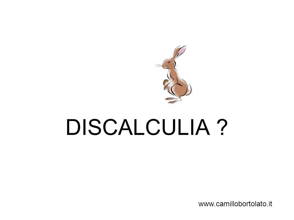 DISCALCULIA ? www.camillobortolato.it