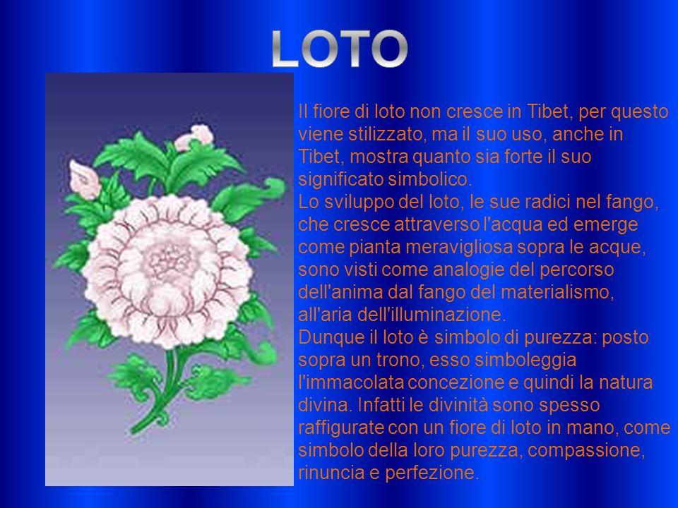 Il fiore di loto non cresce in Tibet, per questo viene stilizzato, ma il suo uso, anche in Tibet, mostra quanto sia forte il suo significato simbolico