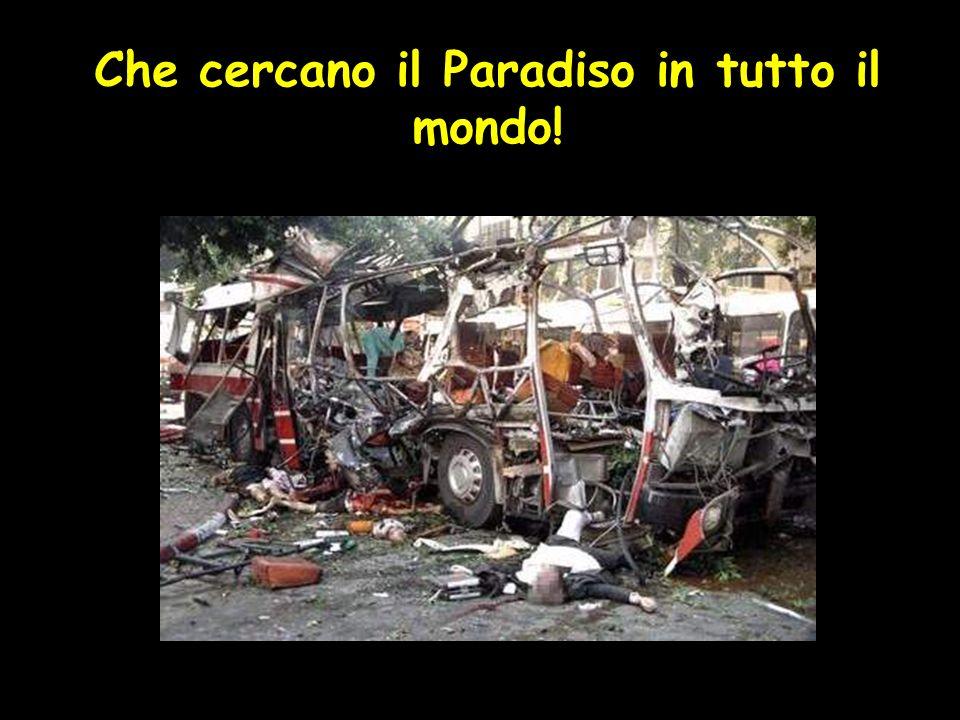Che cercano il Paradiso in tutto il mondo!