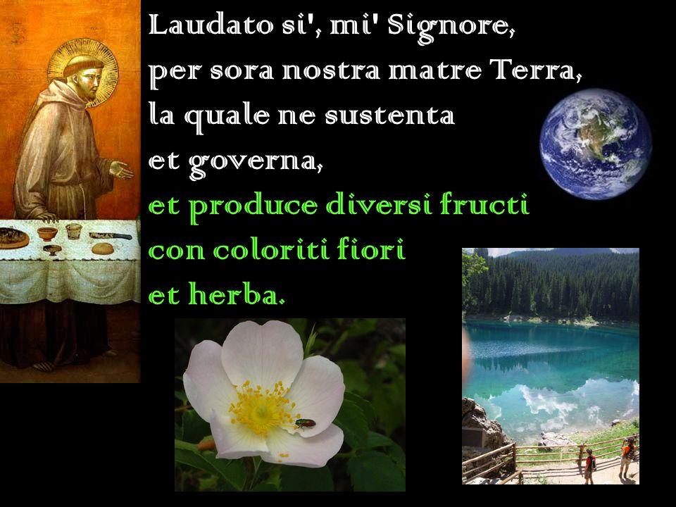 Laudato si', mi' Signore, per sora nostra matre Terra, la quale ne sustenta et governa, et produce diversi fructi con coloriti fiori et herba.